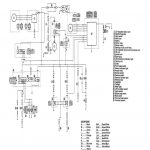 2008 Yamaha Warrior Wiring Diagram   Data Wiring Diagram Detailed   Yamaha Warrior 350 Wiring Diagram