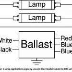 277 Volt Wiring Diagram Lamp   Trusted Wiring Diagram Online   277 Volt Wiring Diagram