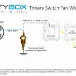 30 Amp Outlet Wiring Diagram Elegant 20 Amp Twist Lock Plug Wiring   Nema L14 30 Wiring Diagram