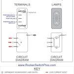 Carling Switch Wiring Diagram   Wiring Diagram Explained   Carlingswitch Wiring Diagram