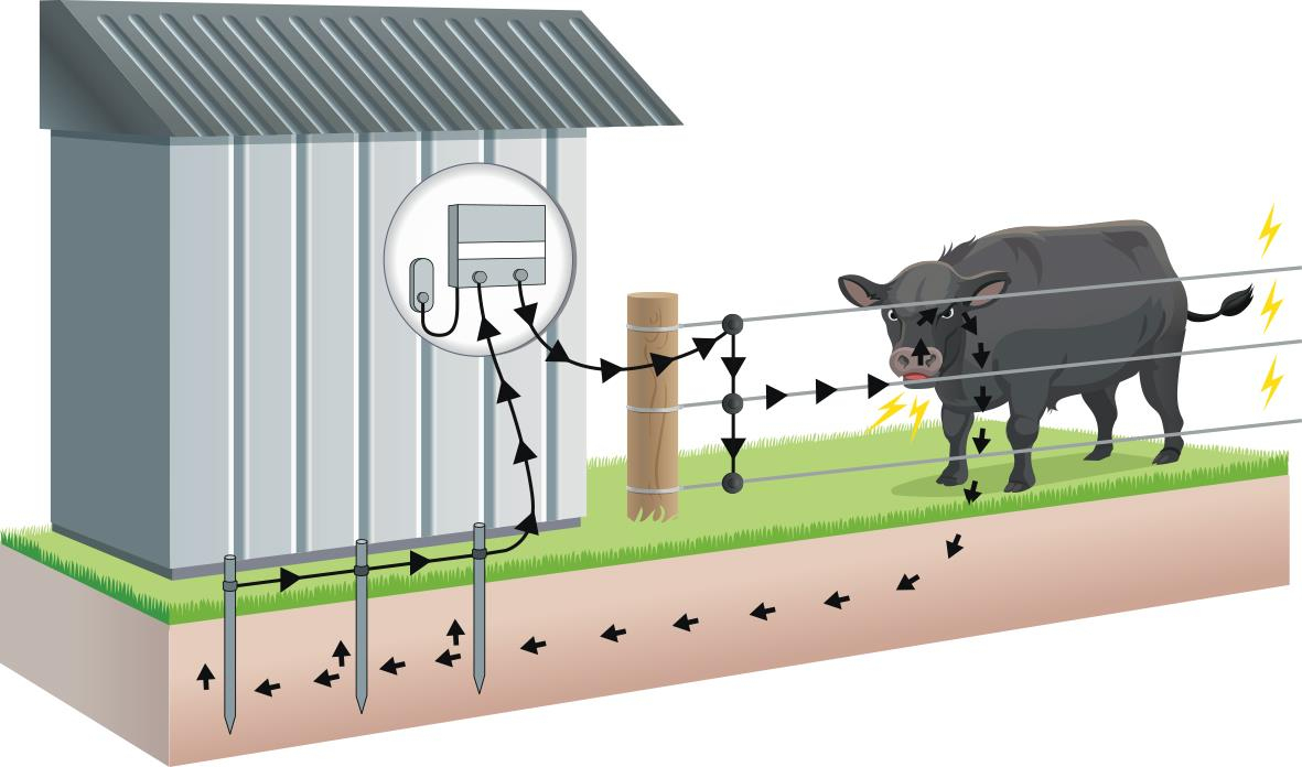 How To Wire An Electric Fence Diagram Beautiful Electric Fence