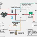 Fan Relay Wiring Diagram   Wiring Diagrams Hubs   Electric Radiator Fan Wiring Diagram
