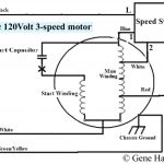 Fan Wiring Diagram | Wiring Diagram   Fan Wiring Diagram