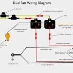 Flexalite Fan Wiring Diagram | Wiring Diagram   Electric Fans Wiring Diagram