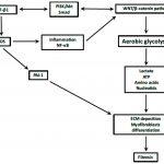 Genteq Motor Wiring Diagram Free Download | Wiring Diagram   Genteq Motor Wiring Diagram