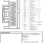 Kenwood Kdc 248U Wiring Diagram Pdf | Wiring Diagram – Kenwood Kdc 248U Wiring Diagram