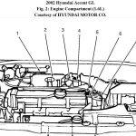 Mass Air Flow: On The Listed Car(2002 Hyundai Accent Gl 1.6Ltr.),   Mass Air Flow Wiring Diagram