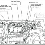 Maxima Oil Pressure Switch Wiring Harness | Wiring Diagram   Oil Pressure Switch Wiring Diagram