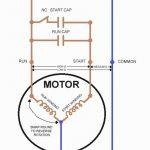 Reverse Single Phase Motor Wiring Diagram | Manual E Books   Wiring Diagram For 230V Single Phase Motor