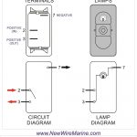 Rocker Switch Wiring Diagrams   New Wire Marine   8 Pin Rocker Switch Wiring Diagram