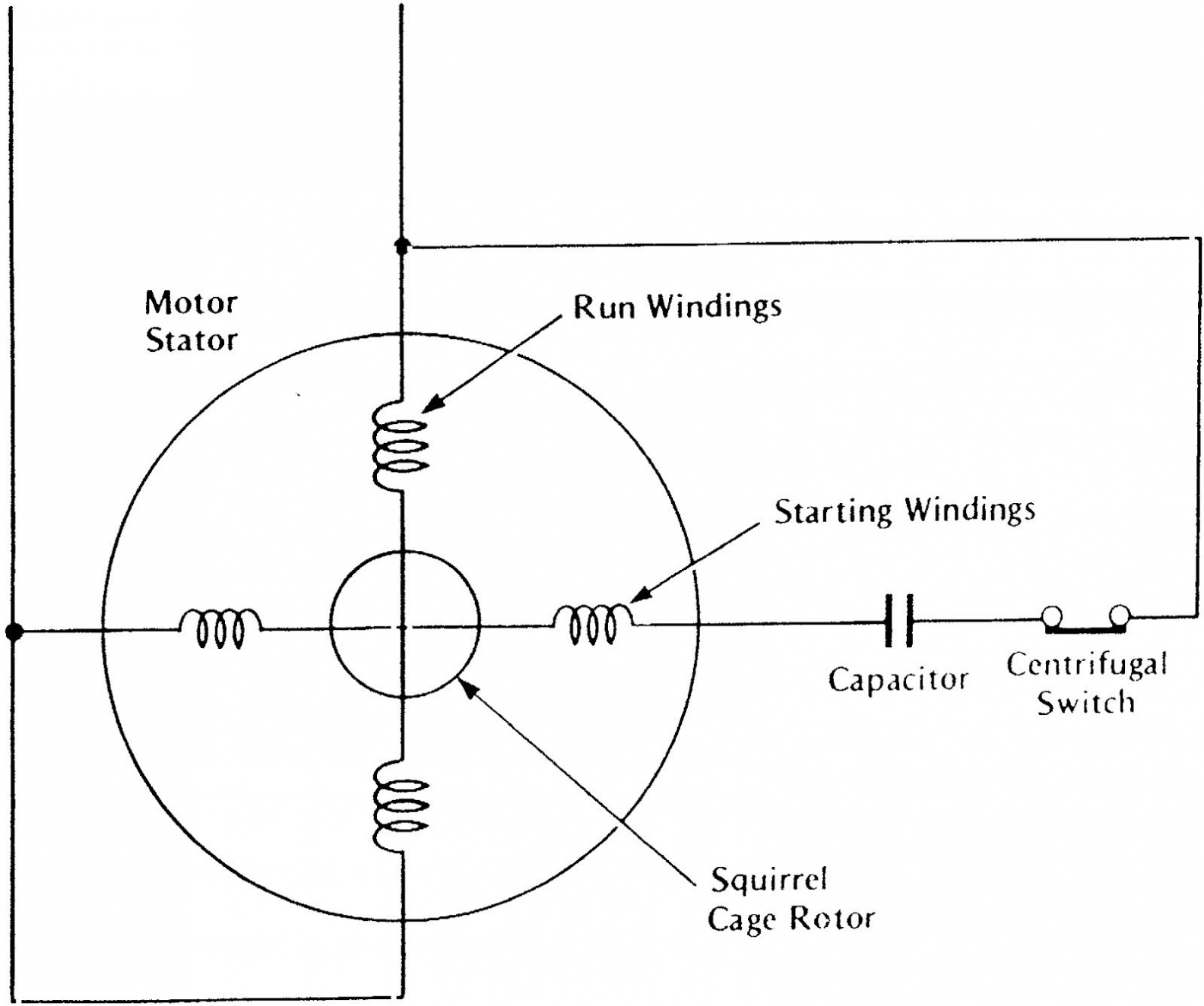 Single Phase Capacitor Start Induction Motor Wiring Diagram | Wiring - 6 Lead Single Phase Motor Wiring Diagram