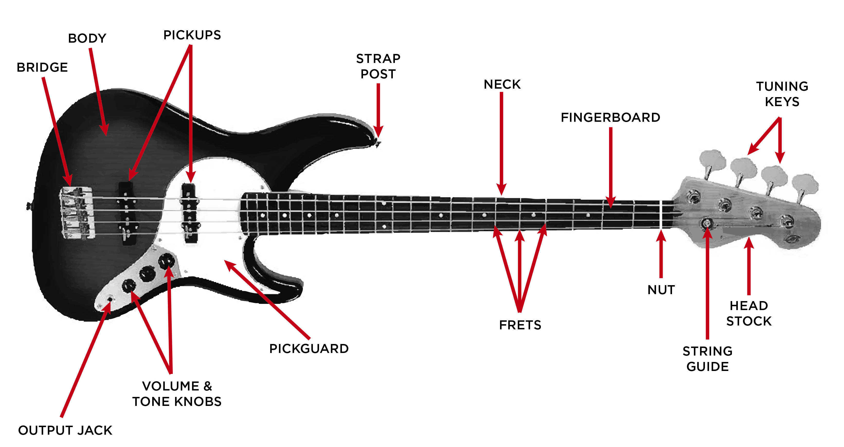 Squier Affinity Jazz Bass Wiring Diagram | Manual E-Books - Fender P Bass Wiring Diagram