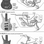 Violin Bass Guitar Wiring Diagram | Manual E Books   Bass Guitar Wiring Diagram