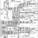 Walking Freezer Wire Diagram | Wiring Diagram   Walk In Freezer Wiring Diagram