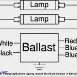 Wiring Diagram For T8 2 Lamp | Manual E Books   2 Lamp T8 Ballast Wiring Diagram