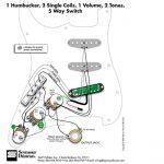 Wiring Diagram. Strat Hss Wiring Harness Hss Strat Wiring Fender   Fender Hss Wiring Diagram