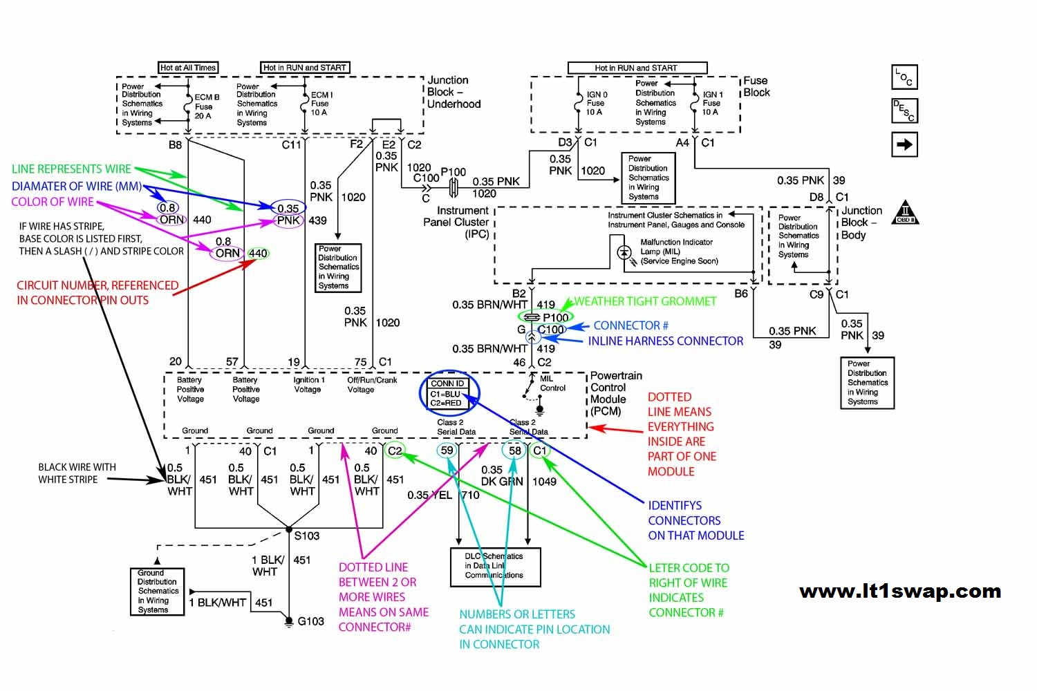 Wiring Harness Information - Ls1 Wiring Harness Diagram