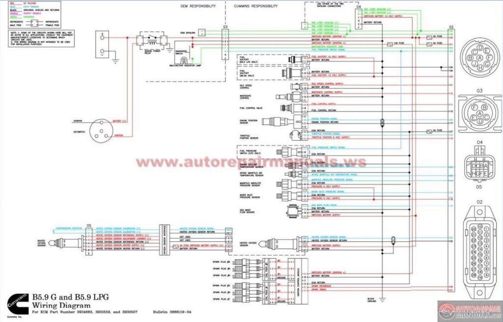 Xr80 Wiring Diagram Further Badlands Turn Signal Module Wiring
